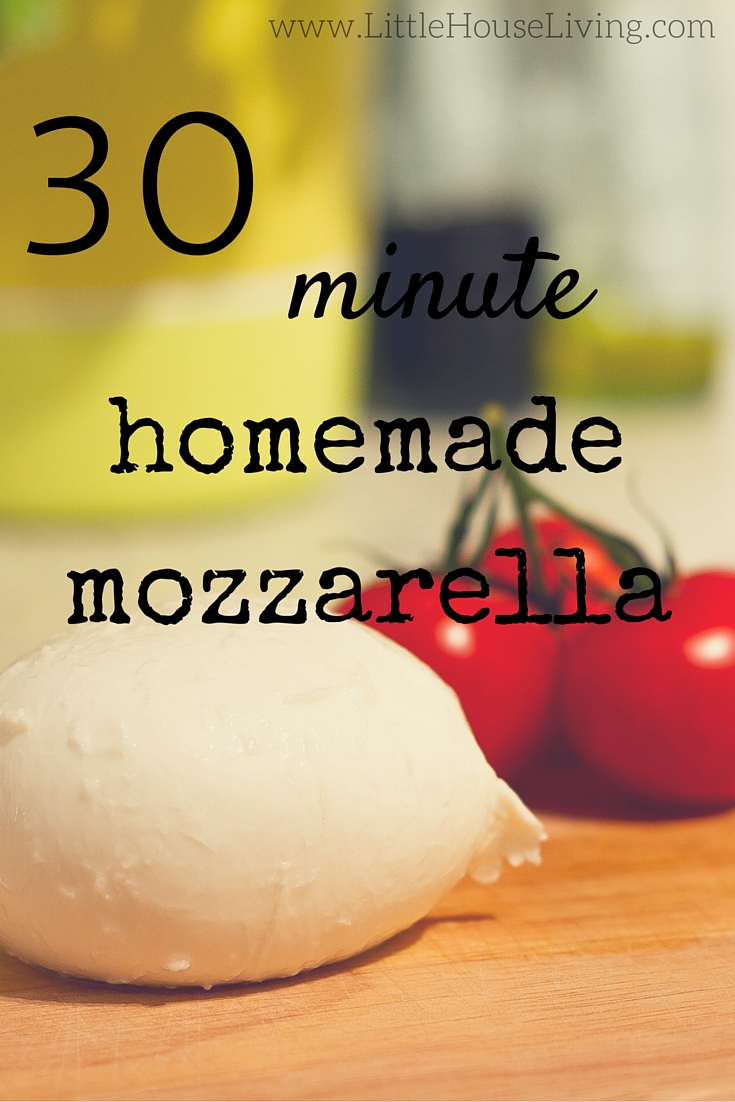 How to make your own fresh mozzarella cheese in only 30 minutes!