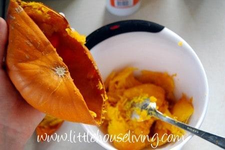 preserving pumpkin