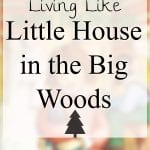 Living Like Little House in the Big Woods