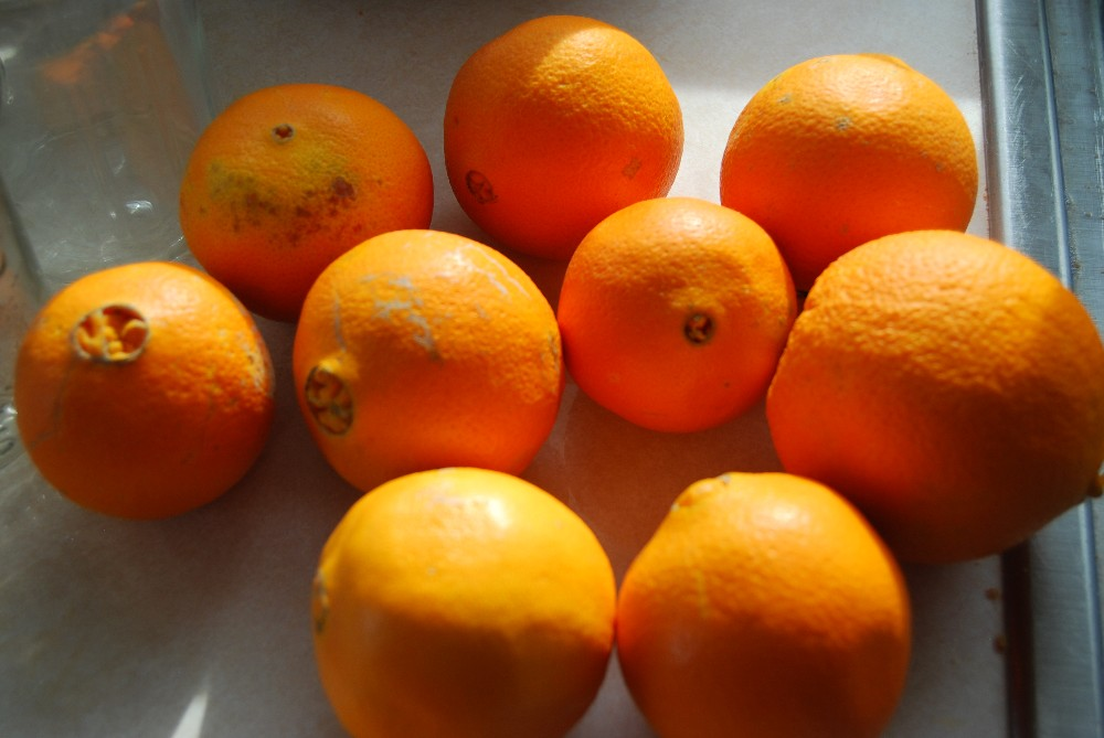 Orange Oil Uses for Home and Beauty