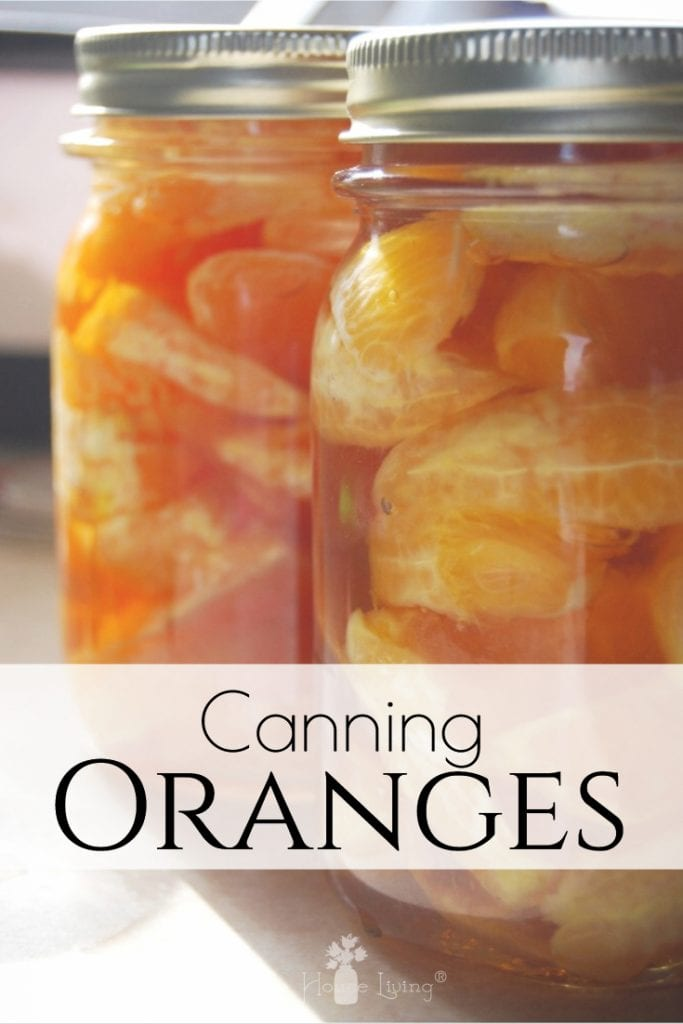 Have you ever tried canning oranges? Learn how to preserve oranges to make them shelf-stable for months to come with this easy picture tutorial! #canningoranges #preserving #canning #oranges
