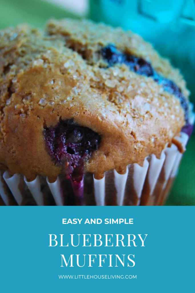 Looking for a basic, tasty muffin that you can make with fresh berries? These Blueberry Muffins make a perfect breakfast or afternoon snack!