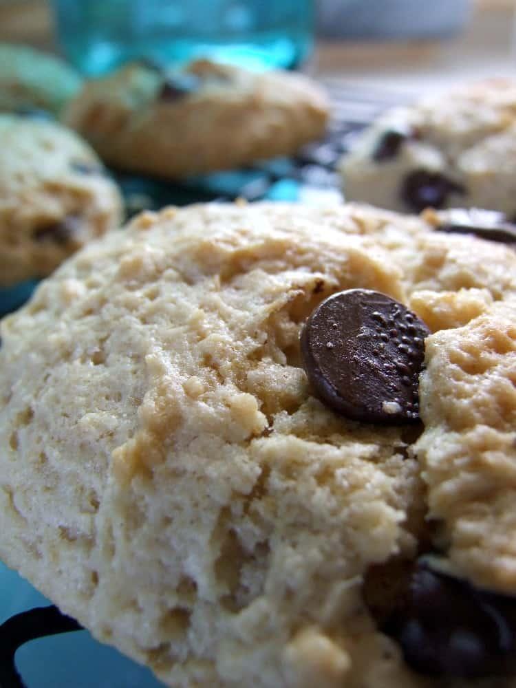blueberry yogurt cookies recipe chocolate chip smores - 750×1000