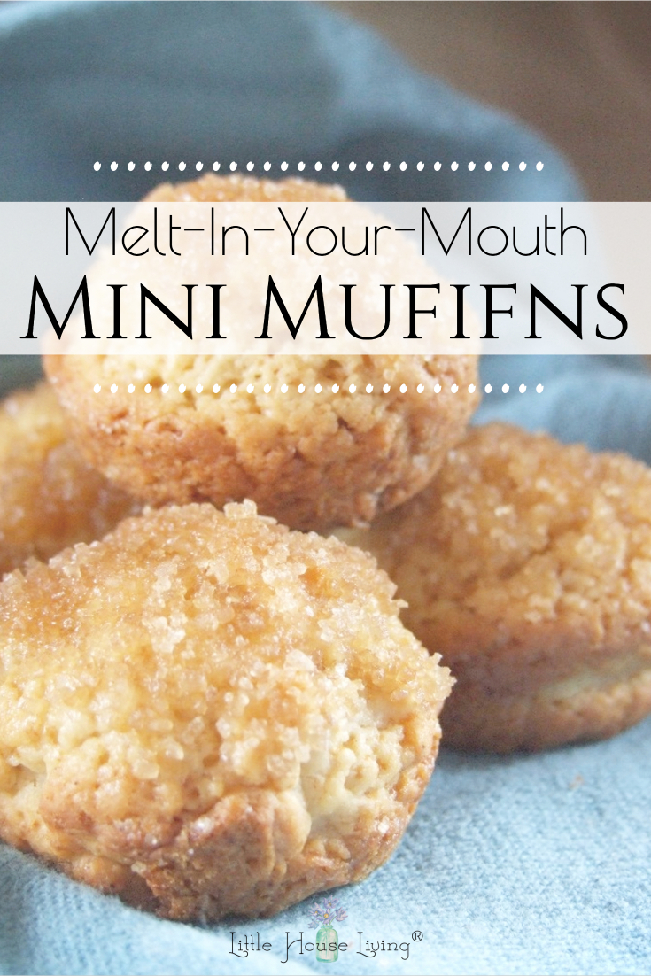 Looking for a simple little muffin recipe that is great for a quick breakfast or to pack along with a lunch? These Melt in Your Mouth Mini Muffins are fun and easy to make!