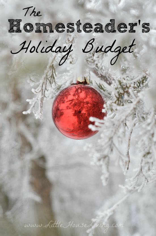 Post image for Homestead Hints: A Homesteaders Holiday Budget