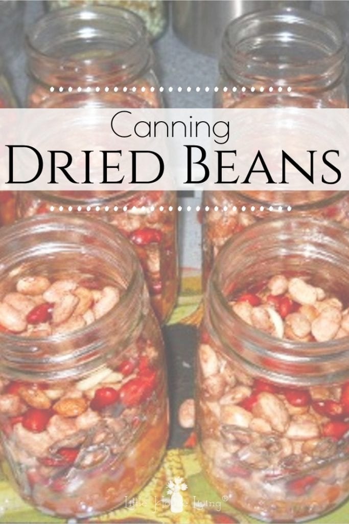 Canning dry beans is an easy and frugal way to have beans available for quick meals and is a great project to do during the winter months when you don't have fresh garden vegetables that need to be canned. #canning #preserving #driedbeans #soakedbeans #beans #canningdrybeans