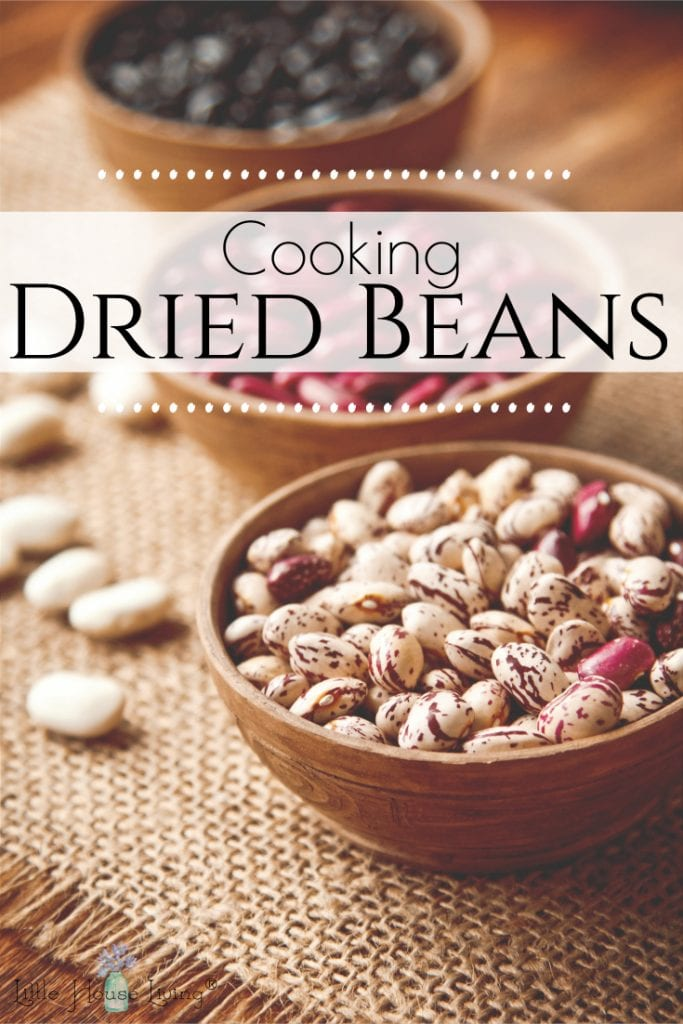 Beans are a frugal pantry staple. Learn how cooking dried beans can make this pantry staple even more frugal by soaking, cooking and preserving your beans for quick and easy meals. #beans #soakbeans #cookedbeans #cookingbeans #driedbeans