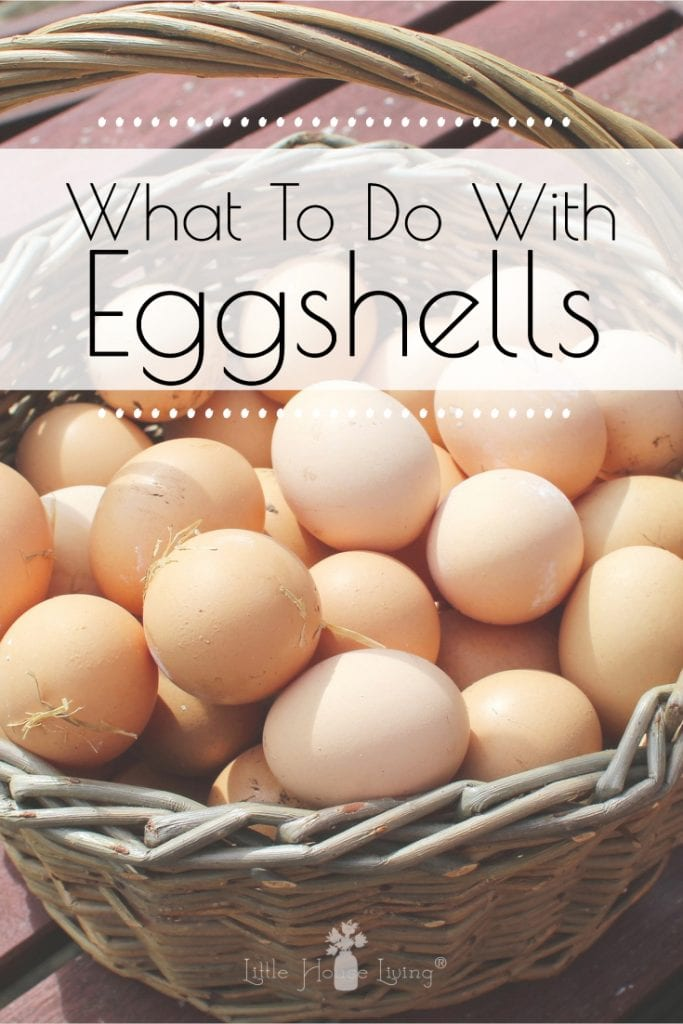 Does your family use a large number of eggs and you always want to know how you can reuse and repurpose the shells? Here are some ideas! #eggshells #reuse #makethemost #nowaste