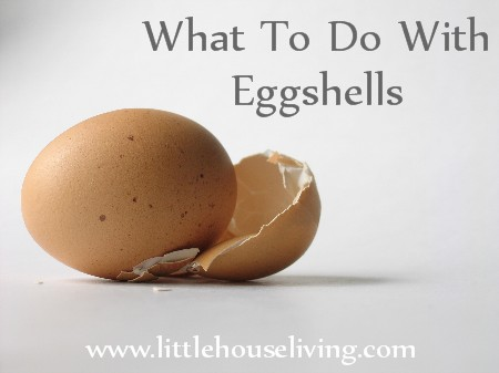 Post image for What To Do With Eggshells