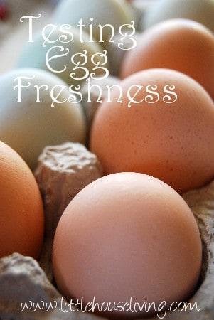 Good Egg, Bad Egg