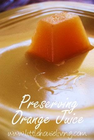 Post image for Saving Orange Juice