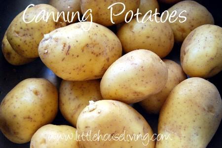 canning-potatoes