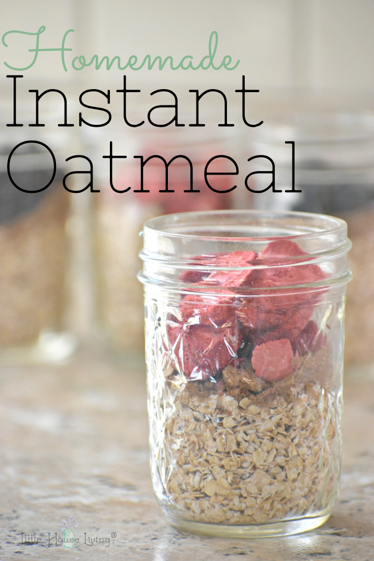 Save time and money by making your own instant oatmeal in fun flavors! SO easy and frugal to make! #instantoatmeal #homemadeoatmeal #frugaloatmeal #makeyourown #instantoatmealrecipe #homemadeinstantoatmeal