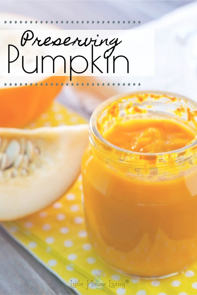 Preserving Pumpkin is easy to do safetly when you know how. Learn how to puree and freeze pumpkin for use in your favorite pumpkin recipes all year long. #presservingpumpkin #pumpkinpuree #freezingpumpkin #pumpkin #pumpkinrecipes