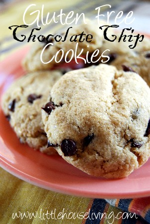 Post image for Gluten Free Chocolate Chip Cookies