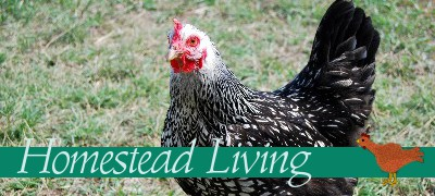 homesteadliving