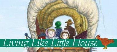 livinglikelittlehouse (1)