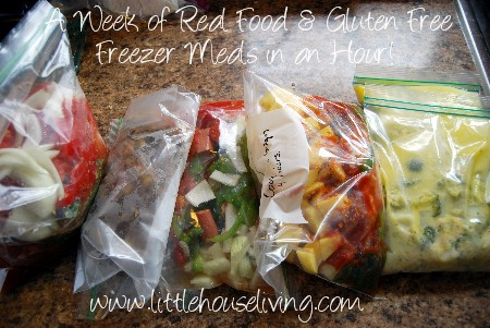 Post image for Freezer Cooking in an Hour (Gluten Free & Real Food!)