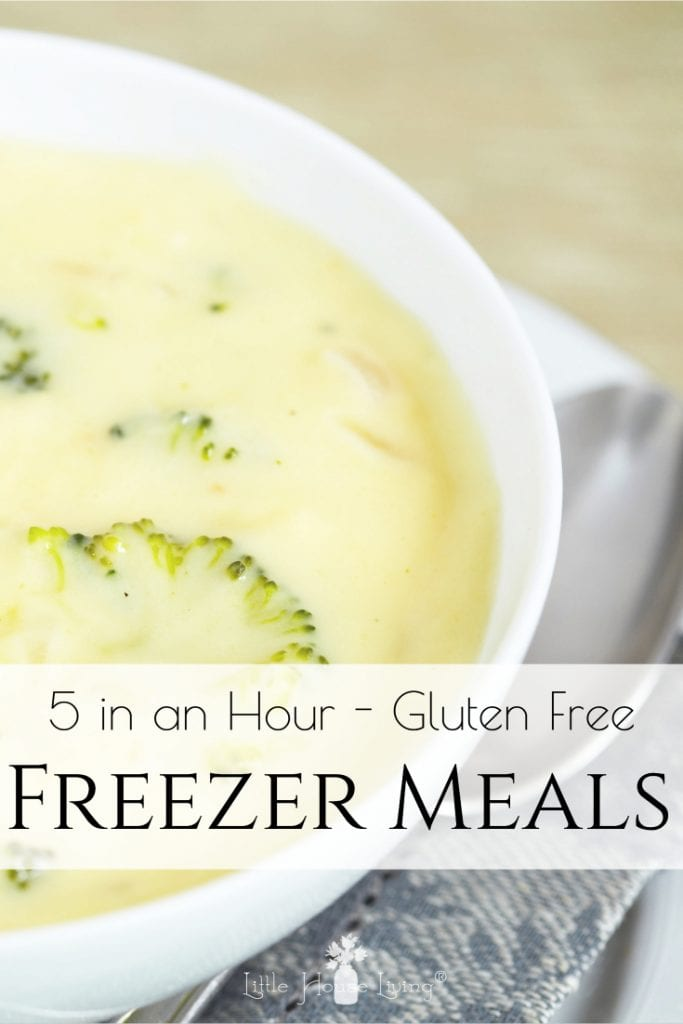 Sometimes life just comes at you from all directions and the last thing that you want to worry about is what you are putting on the table for supper. To make things easier, I put together these Gluten Free Freezer meals that I can simply pull out, place in my slow cooker, and enjoy when it's time to eat. #freezermeals #glutenfree #glutenfreefreezermeals #realfoodfreezermals #crockpot