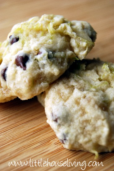 Zucchini Recipes – Zucchini Cookie Recipe – How to Make Zucchini ...