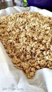 The Best Homemade Granola Recipe