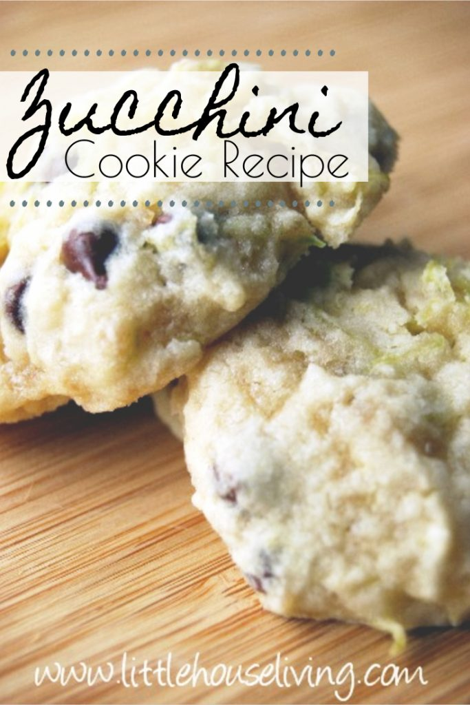 Time for another yummy zucchini recipe to use up all that abundance! This recipe for Zucchini Cookies was something my granny used to make. Your family will just love this soft Zucchini Cookie Recipe!