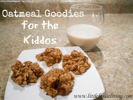 Post image for Oatmeal Goodies (Easy Cookie Recipes For Kids)
