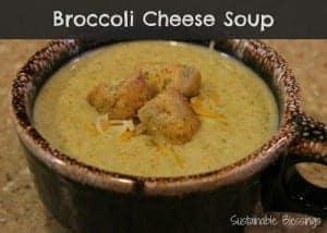 broccolicheese