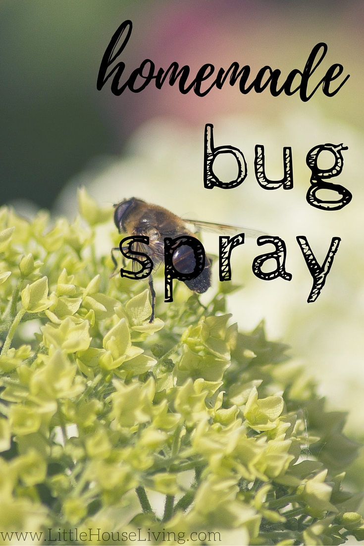 Post image for Homemade Bug Spray for Gardens (Simplest Recipe Ever!)