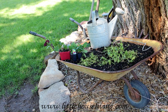 Simple Garden Projects - Little House Living