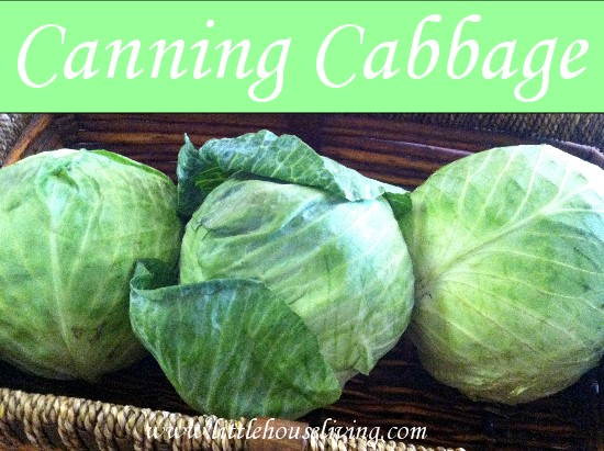 Post image for Canning Cabbage (How to Make Sauerkraut)