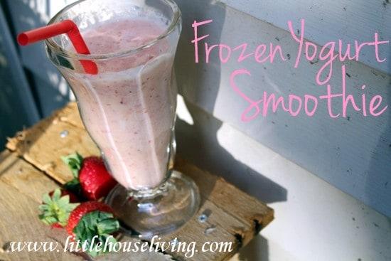 Frozen Yogurt Smoothie Recipe