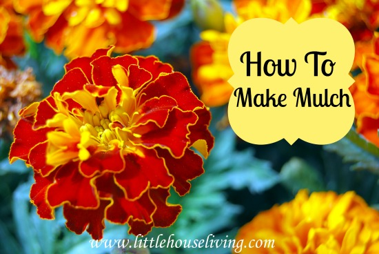 Post image for How to Make Mulch (Preparing the Garden and Flowers for Winter)
