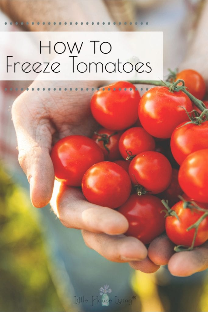 Looking to put away those fresh garden tomatoes to use all year round? Learn How to Freeze Tomatoes with this simple technique and easy step by step instructions! #freezetomatoes #preservetomatoes #howtofreezetomatoes #preservetomatoes