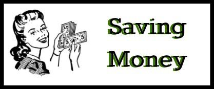 savingmoneylady