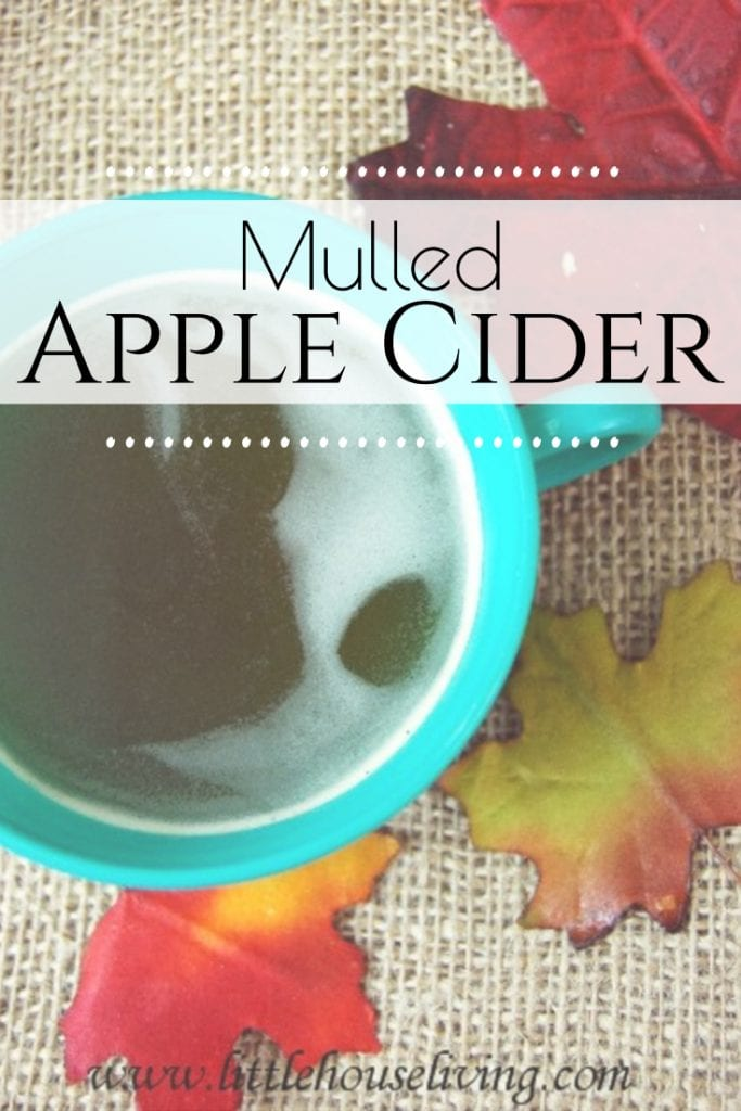 How to make a warm and delicious Homemade Mulled Apple Cider Recipe. Perfect for a cold fall evening or a fall themed party! #fallfavorites #warmdrinks #applecider #mulledapplecider #homemadeapplecider #homemademulledcider