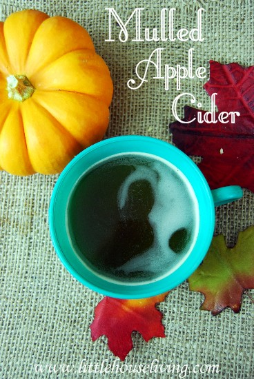 Mulled Apple Cider - Little House Living