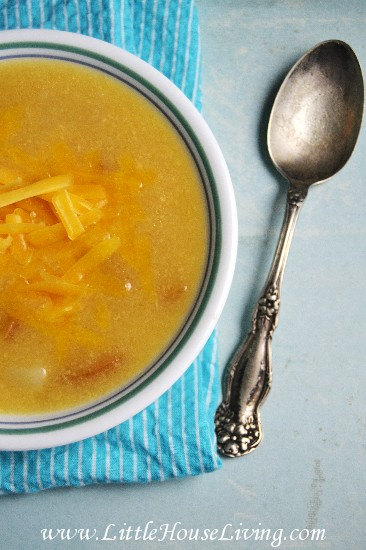 Apple Cheddar Soup Recipe