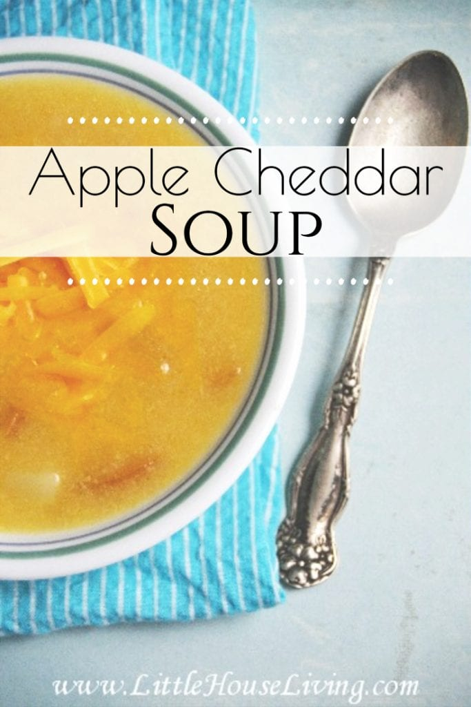 I love trying something different now and then, especially if it involves soup! This Apple Cheddar Soup recipe is a little different but it's fun and very tasty. #cheddarapplesoup #soup #applecheese #winterrecipes #souprecipes #crockpotrecipes