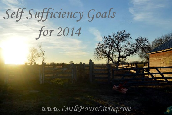 Self Sufficiency Goals for 2014