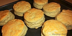 Biscuit Recipe by Seven Springs Homestead