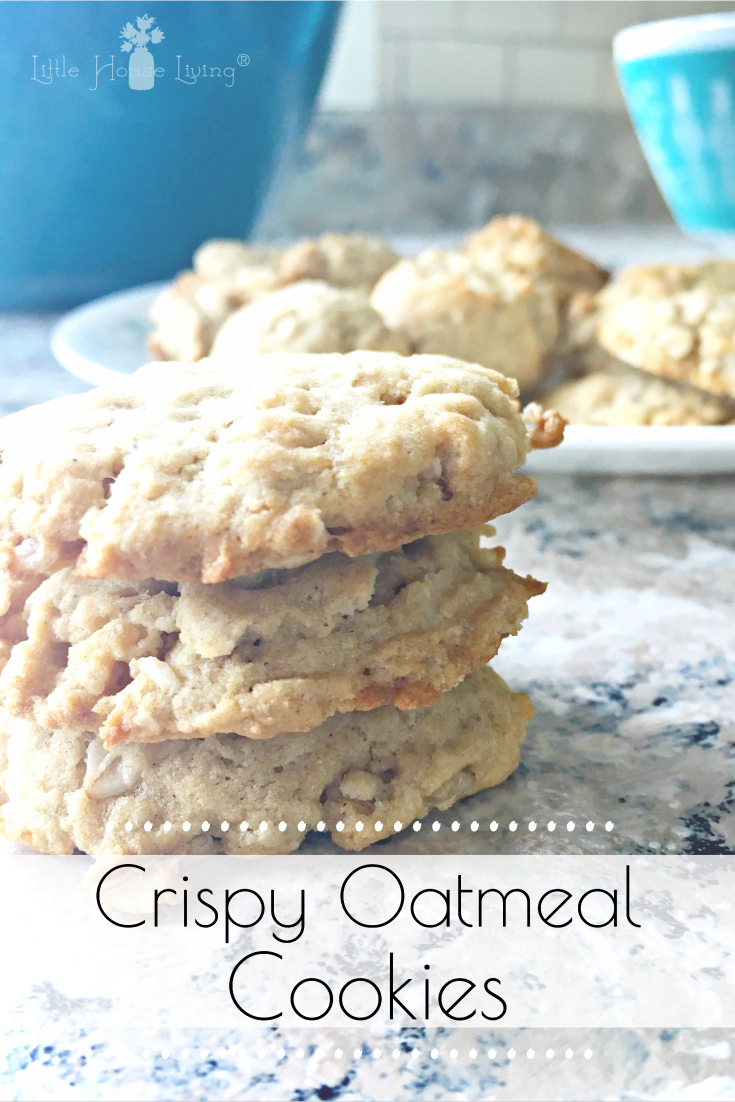 Looking for a simple and delicious cookie treat to make for your family? This Rice Crispy Oatmeal Cookies recipe is allergy-friendly and so tasty! #oatmealcookies #crispycookies #ricecrispycookies