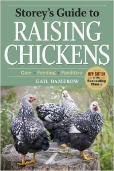 raisingchickensstory