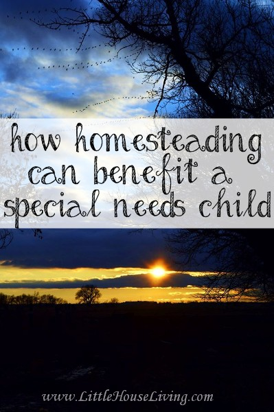 How Homesteading Can Benefit a Special Needs Child - Little House Living