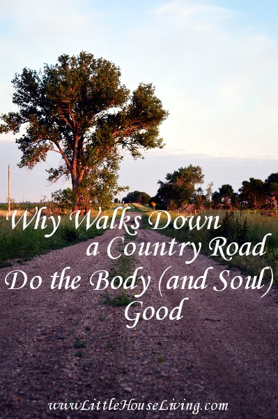 Post image for Why Walks in the Country Do the Soul (and the Body) Good