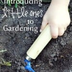 Introducing Little Ones to Gardening