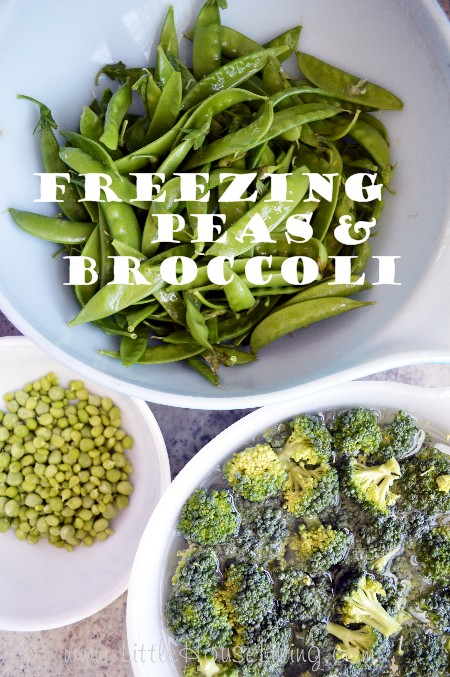 Freezing Peas and Freezing Broccoli