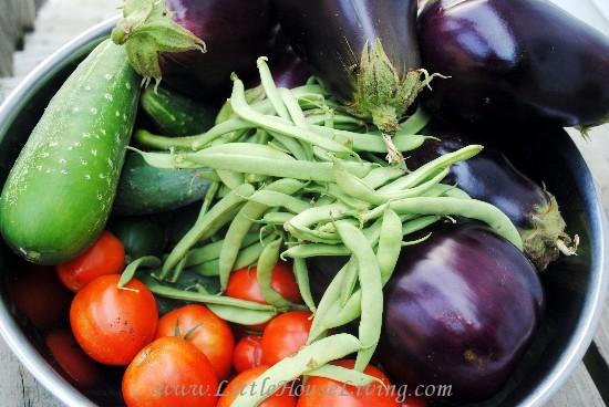 Creating a Meal Plan Around Seasonal Produce