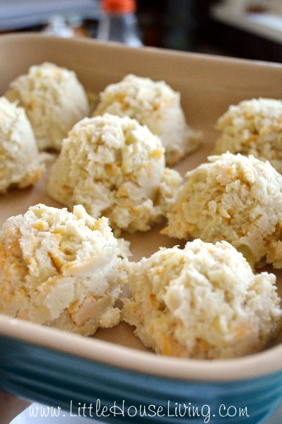 Yellow Squash Cheddar Biscuit Recipe