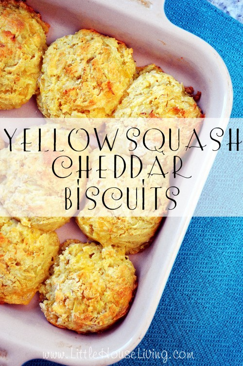 Yellow Squash Cheddar Biscuit Recipe - Little House Living